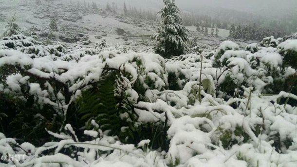 Снег в Карпатах летом