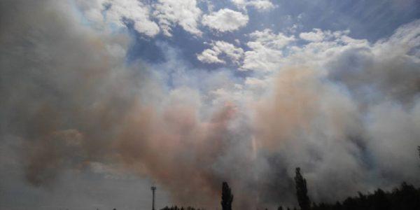 горит Рыжий лес в Чернобыле