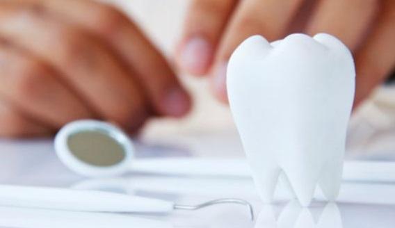 Выбитый зуб можно приживить обратно