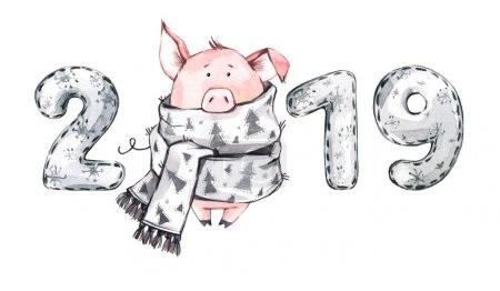 Год Свиньи 2019 – подготовка к Новому году
