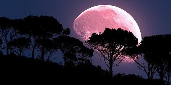 розовое полнолуние, розовая луна