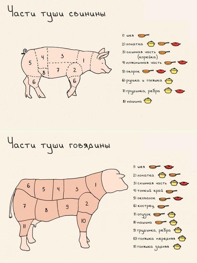 советы по выбору мяса