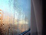 Конденсат на окнах: причины появления, как избавиться