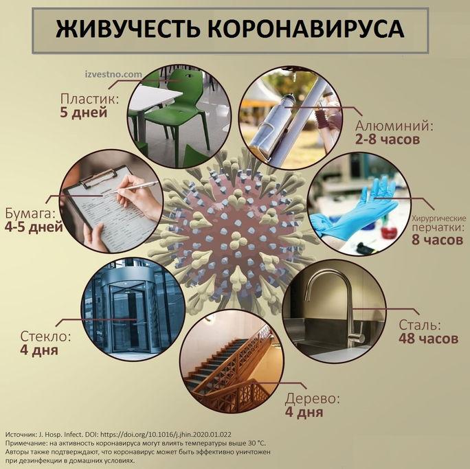сколько живет коронавирус