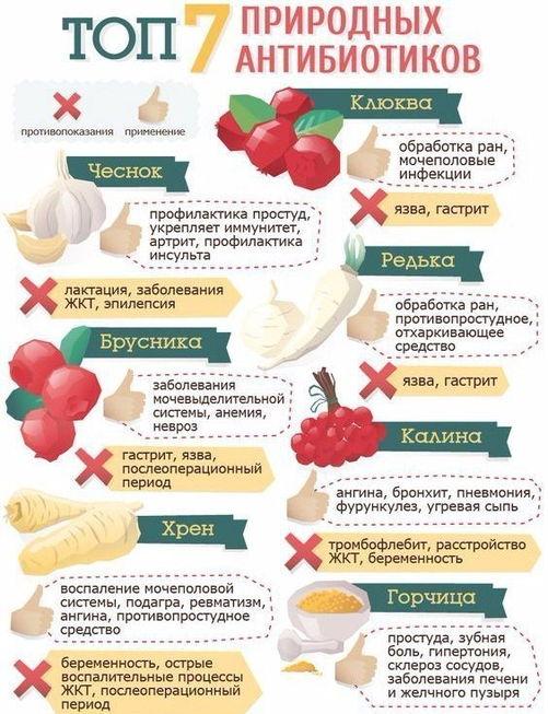 природный антибиотик