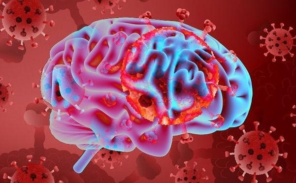 Как коронавирус влияет на мозг?