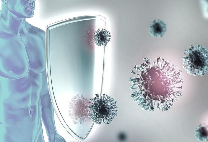 здоровье иммунной системы