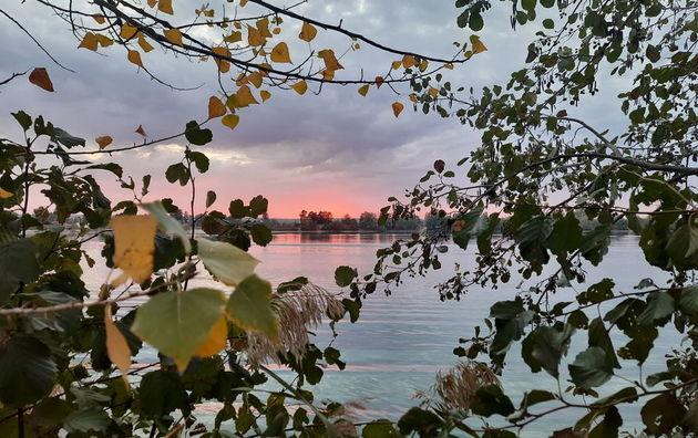 лайфхак осень