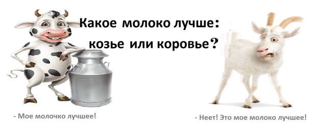 Какое молоко лучше: козье или коровье?